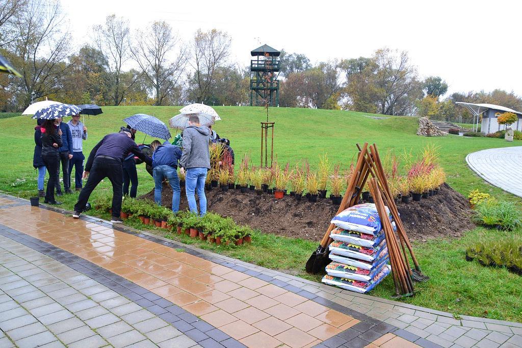 d69f3dee1 Výsadba zelene v rámci projektu: Zlepšenie kvality životného prostredia  Oddychovej zóny Margarétka